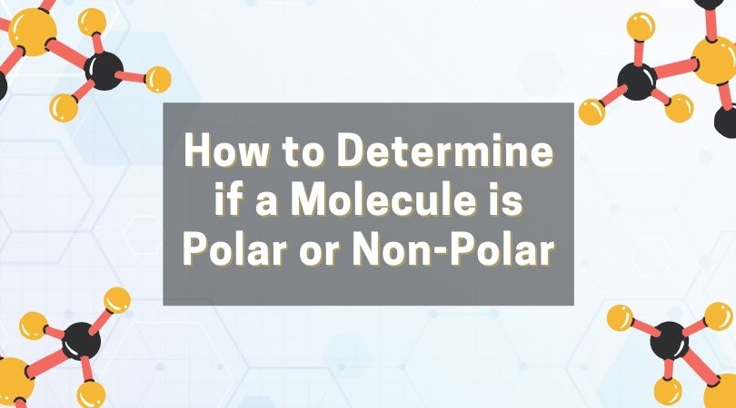 How to Determine if a Molecule is Polar or Non-Polar