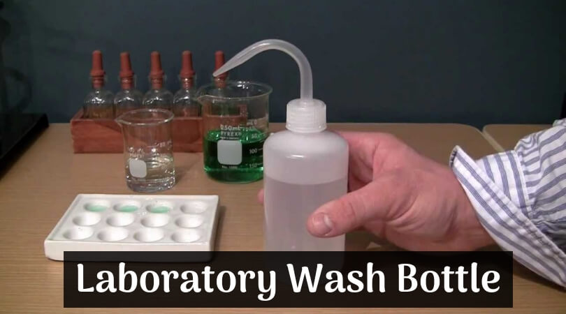 Laboratory Wash Bottle