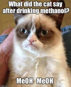 Cat and chemistry_