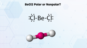 BeCl2 Polar or Nonpolar