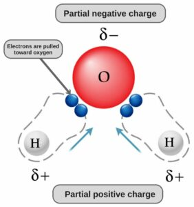partial-negative-positive-charge-H2O