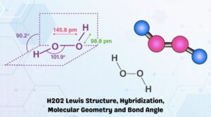 H2O2 Lewis Structure, Hybridization, Molecular Geometry and Bond Angle