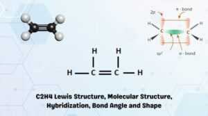 C2H4 Lewis Structure, Molecular Geometry, Bond Angles and Hybridization