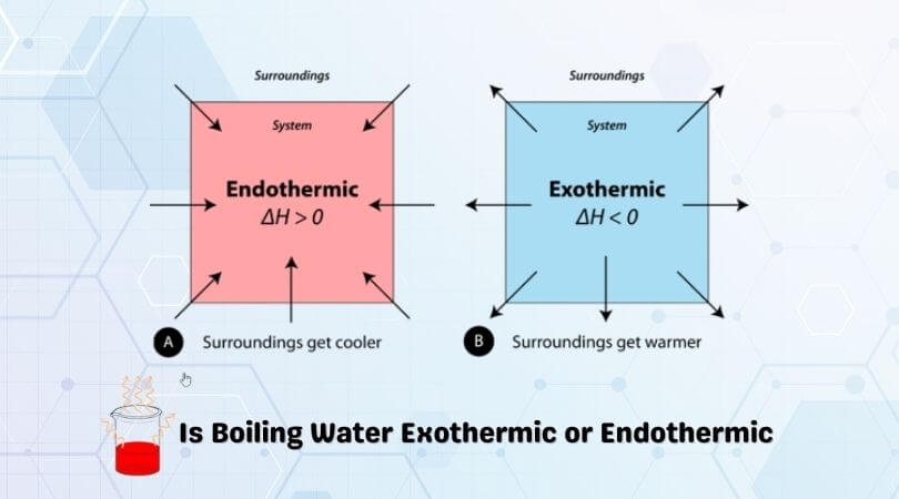 Is Boiling Water Exothermic or Endothermic