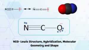 NCO- Lewis Structure, Hybridization, Molecular Geometry and Shape