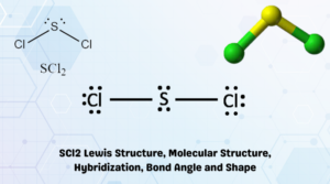 SCl2 Lewis Structure, Molecular Structure, Hybridization, Bond Angle and Shape
